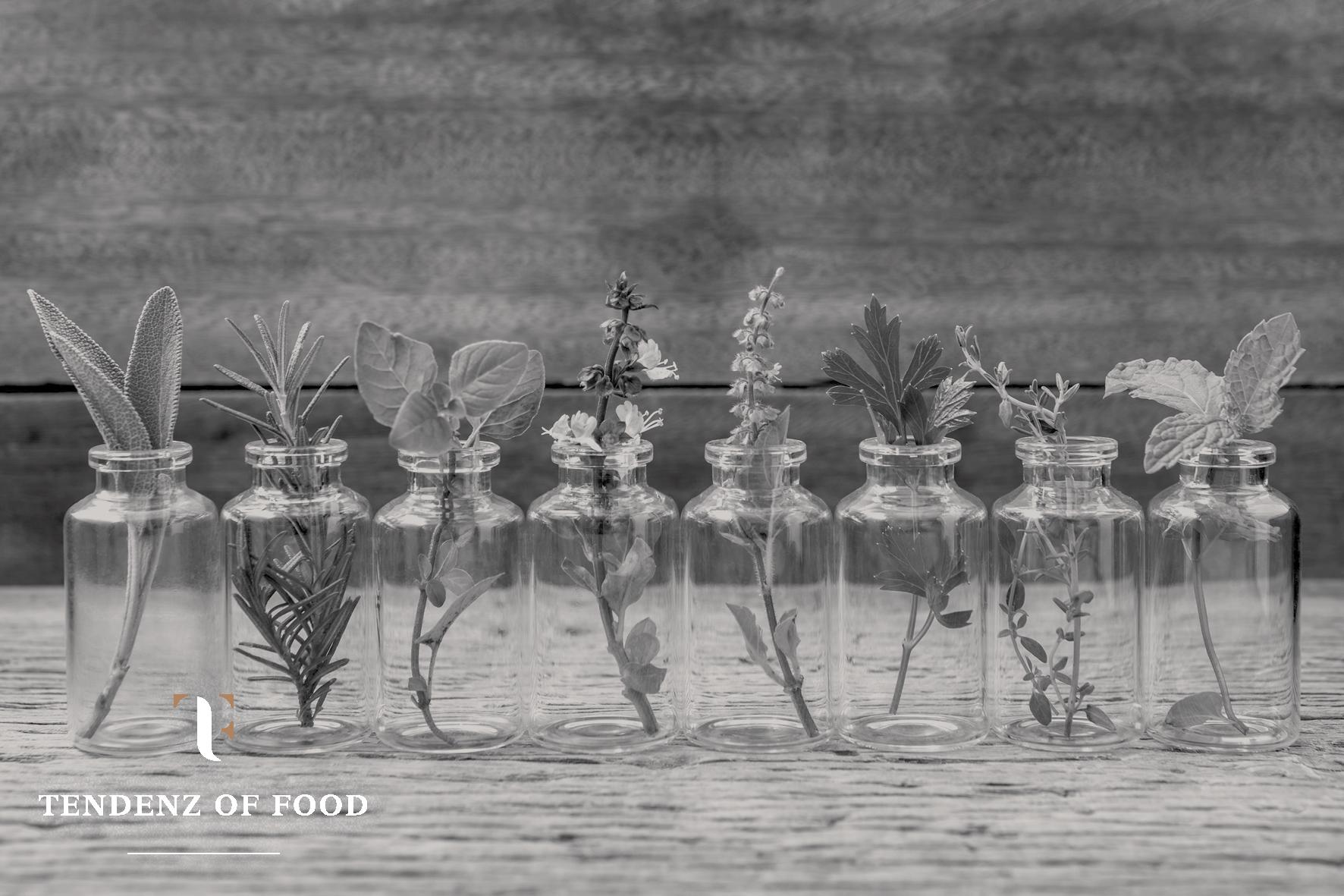 Tendenz of Food3